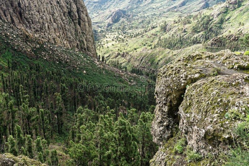 Rocky Ravine in La Gomera. Rocky ravine in the mountains of La Gomera, Canary Islands royalty free stock photography