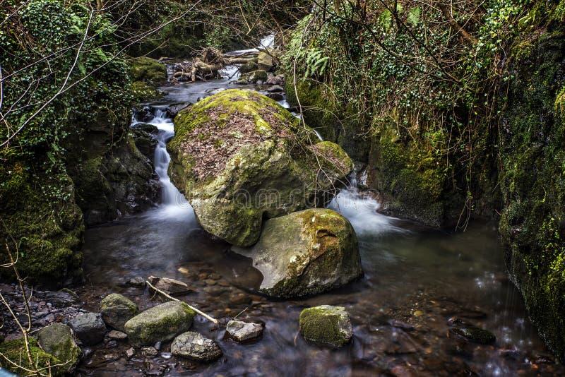 Rocky River en Alva Glen Scotland imagenes de archivo