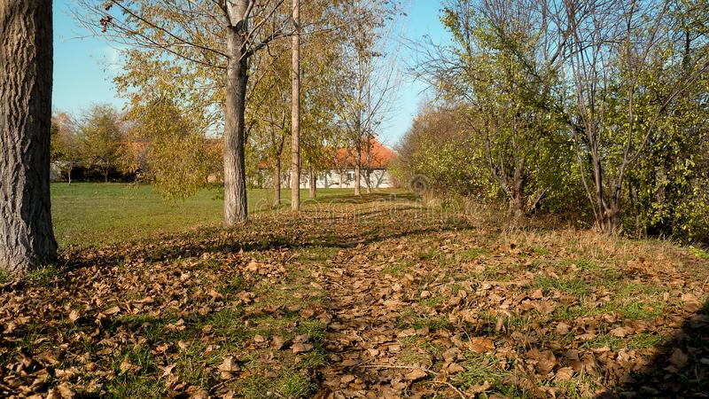 Rocky road path to home royalty free stock image