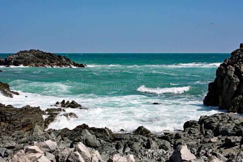 Rocky Sea Coast #3: Masiraheiland, Oman stock afbeelding