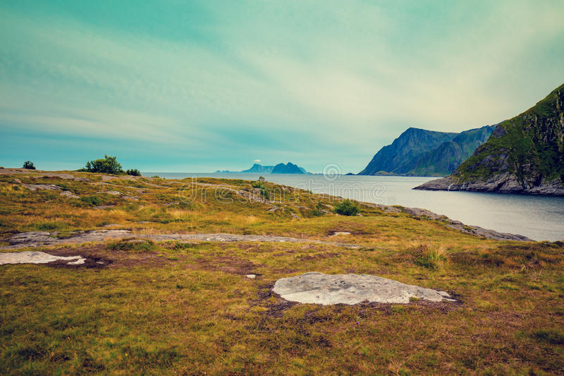Rocky seashore with cloudy sky. Wilderness. Beautiful nature Norway. Lofoten islands royalty free stock image