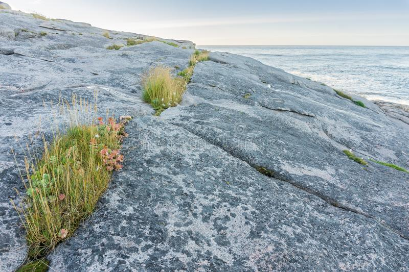 A rocky shore of the Barents Sea, Mageroya island, Norway. A rocky shore of the Barents Sea, island of Mageroya, Norway stock image