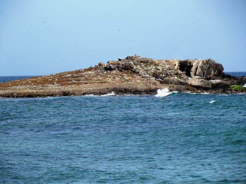 Rocky shore 5 stock image