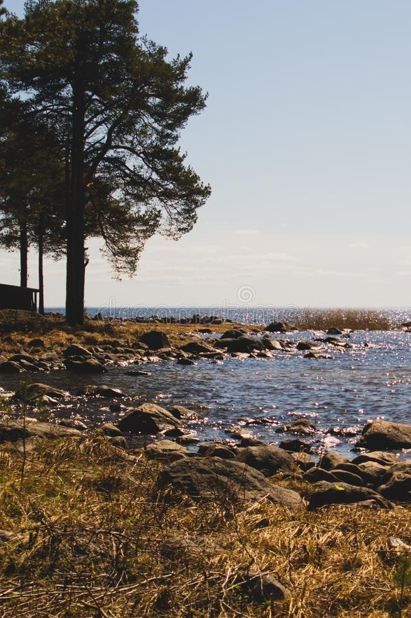 Rocky shore of the lake in the morning royalty free stock images