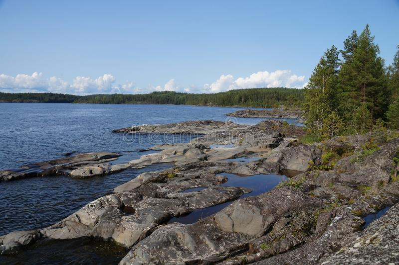 Rocky rocky shore of the lake, on the shore of pine, moss. Clear sunny day. stock image