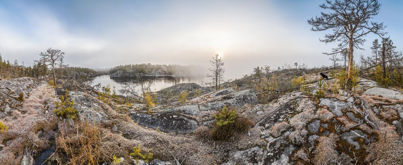 Rocky shore of the lake on a sunny day. stock images