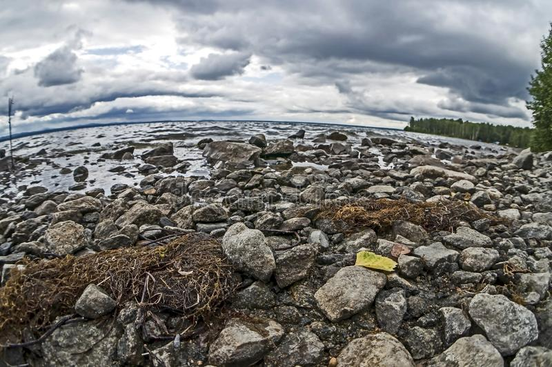 Rocky shore of the morning lake in cloudy weather in the southern Urals, narrow focus area. Rocky shore of the morning lake in cloudy weather in the southern royalty free stock image