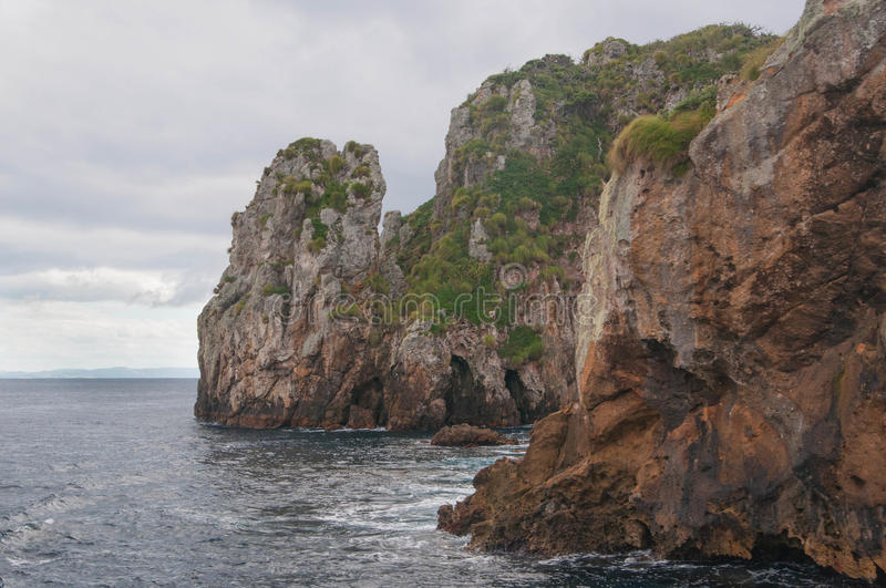 Rocky shore of Poor Knights Islands royalty free stock photography