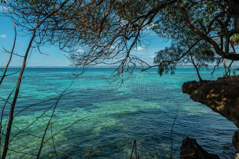 Amazing ocean in many shades of blue. Rocky shore with trees by amazing ocean in many shades of blue stock photography