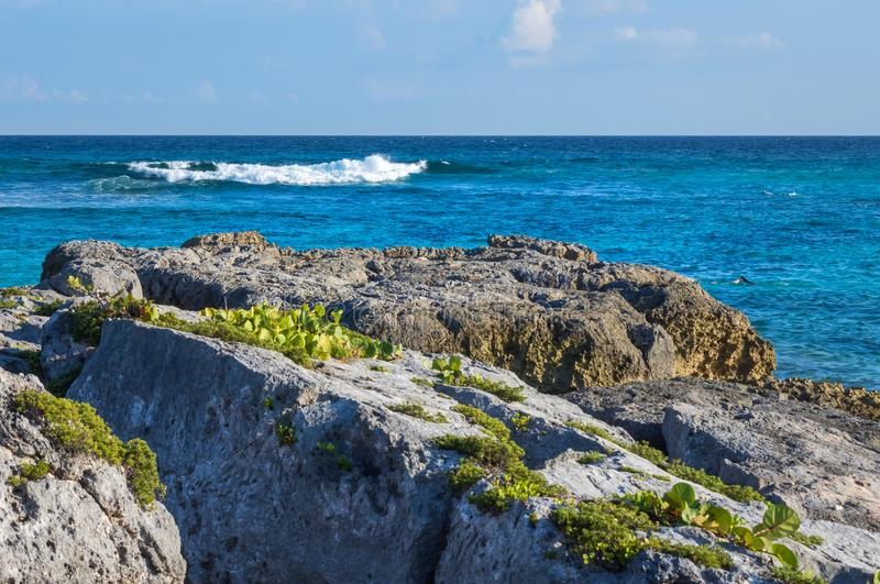Rocky shore with turquoise blue sea water. Caribbean, Riviera Maya, Cancun, Mexico. Rocky shore with turquoise blue sea water. Caribbean, Riviera Maya, Cancun royalty free stock photography