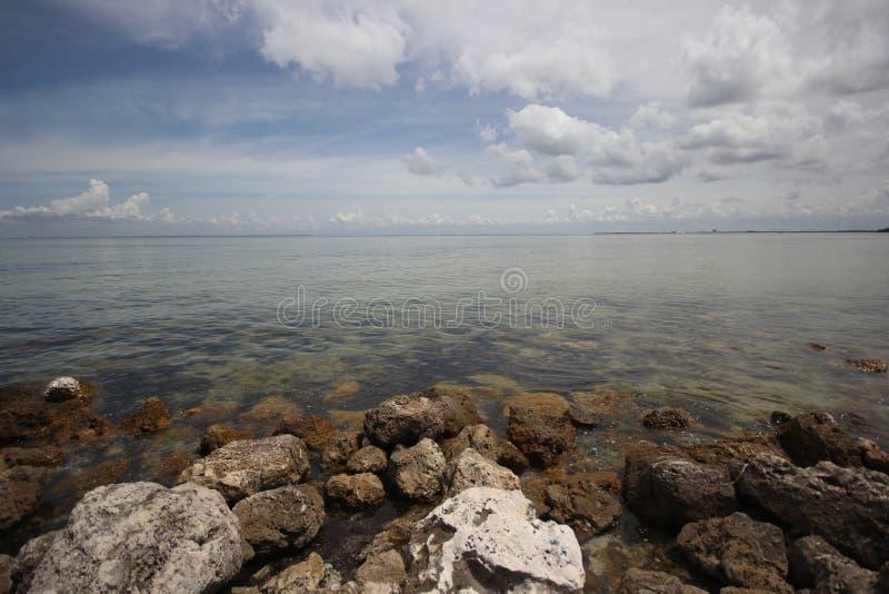 Rocky Shoreline av Tampa Bay arkivbild