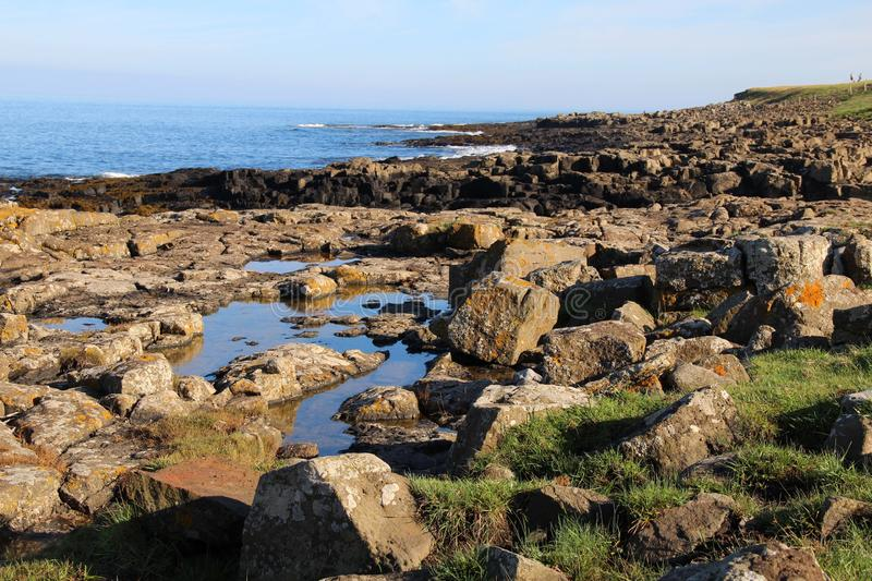 Rocky Shores of Craster, Northumberland zdjęcie royalty free