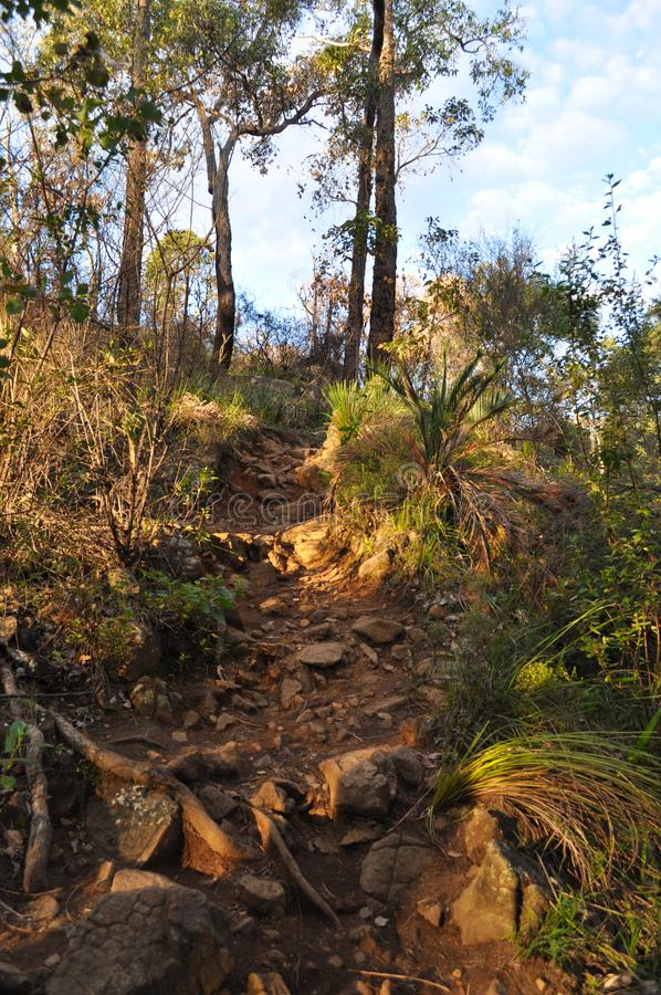 Red dirt track and Eucalyptus trees in Springtime, Australia. Rocky, steep path on the Whistlepipe Gully Walk, Mundy Regional Park, Kalamunda, Western Australia stock photos