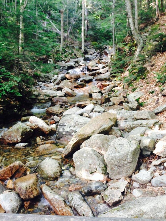 Rocky Stream royalty-vrije stock foto