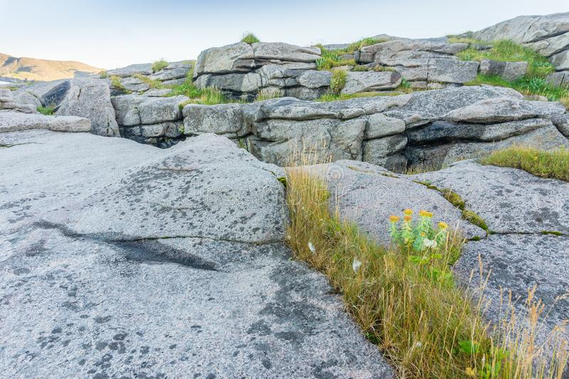 Rocky terrain and vegetation on the island Mageroya, Norway. Rocky terrain and vegetation on the island of Mageroya, Norway royalty free stock images