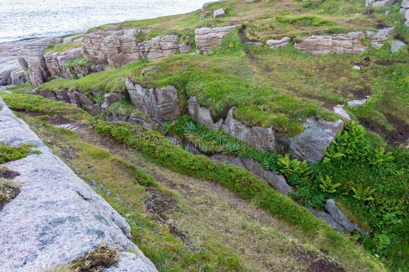 Rocky terrain and vegetation on the island Mageroya, Norway. Rocky terrain and vegetation on the island of Mageroya, Norway royalty free stock image