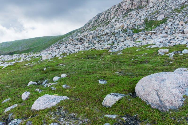 Rocky terrain and vegetation on the island Mageroya, Norway. Rocky terrain and vegetation on the island of Mageroya, Norway stock images