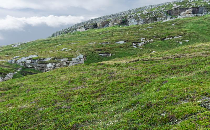 Rocky terrain and vegetation on the island of Mageroya, Norway. Rocky terrain and vegetation on the Mageroya island, Norway royalty free stock photography
