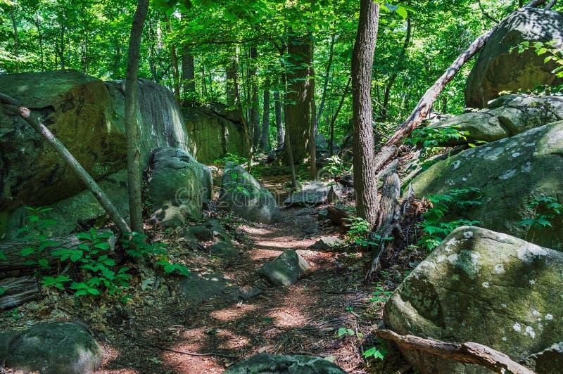 Rocky Trail arkivfoto