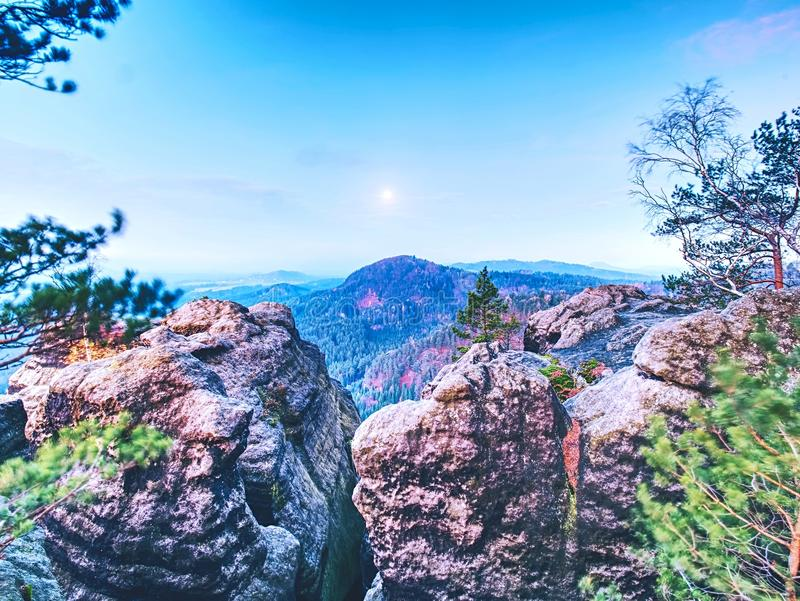 The rocky with tree. Full moon night in a beautiful mountain. Sandstone peaks and hills increased from fog royalty free stock photo