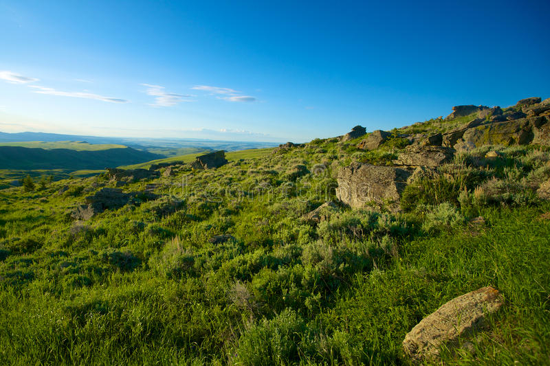 Download Rocky Wyoming Hillside stock photo. Image of hillside - 40480508