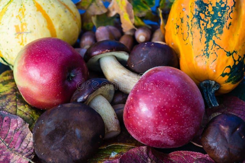 Roczna jesieni dekoracja zdjęcie royalty free
