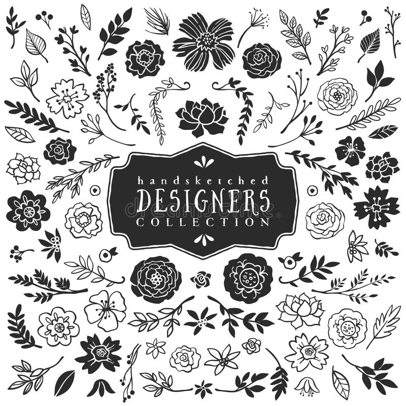 Roczników kwiaty i ręka patroszona ilustracji