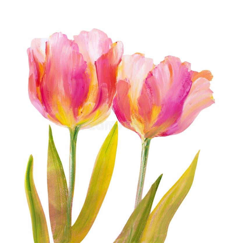 Download Roczników Różowi tulipany ilustracji. Ilustracja złożonej z czerwień - 53785161