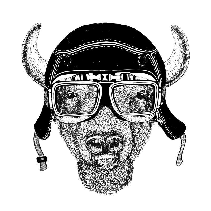 Roczników wizerunki bizon, żubr, wół dla koszulka projekta dla motocyklu, rower, motocykl, hulajnoga klub, aero klub ilustracji