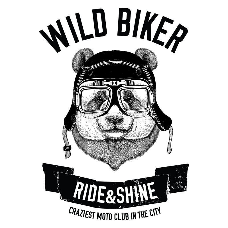 Roczników wizerunki panda niedźwiedź dla koszulka projekta dla motocyklu, rower, motocykl, hulajnoga klub, aero klub ilustracji