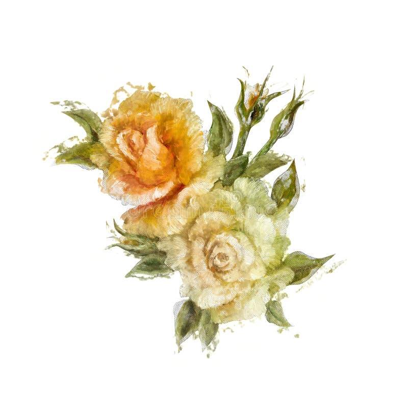 Download Rocznik Białe I żółte Stylowe Róże Ilustracji - Ilustracja złożonej z kwiat, kolorowy: 53785041