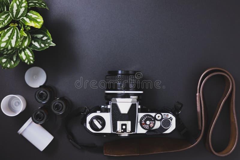 Rocznik ekranowe kamery i ekranowe rolki, drzewa obraz royalty free