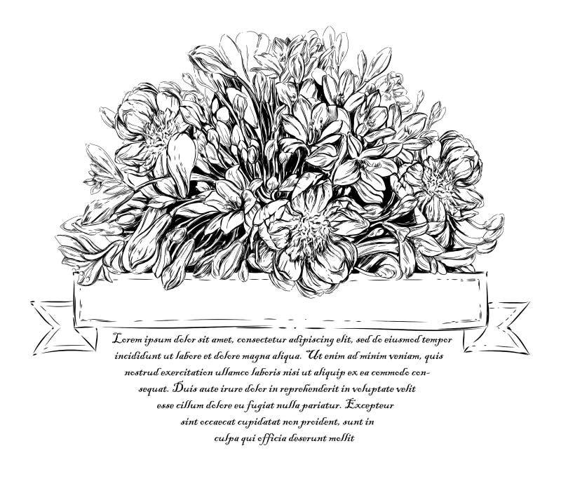 Rocznik elegancka karta z lato kwiatami Kwieciści projekty w okręgu ilustracji