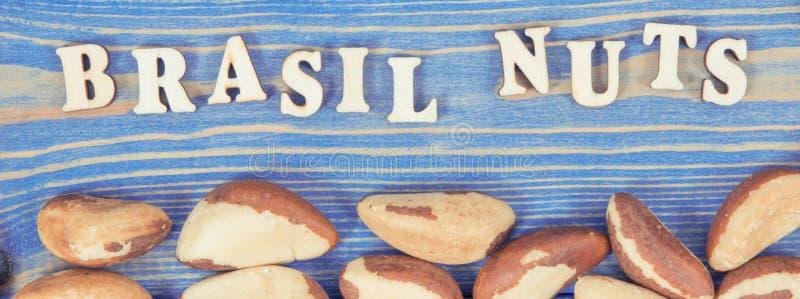Rocznik fotografia, Wpisowe Brasil dokrętki i owoc jako źródło, naturalne kopaliny i witamina obrazy royalty free