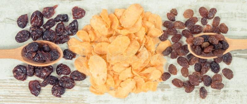 Rocznik fotografia, Zdrowi odżywczy składniki jako źródło witaminy, węglowodany i żywienioniowy włókno, obrazy stock