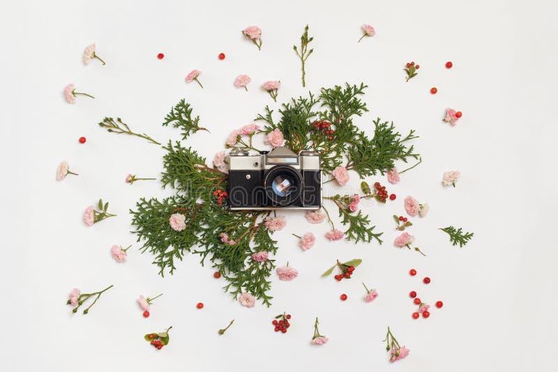 Rocznik fotografii retro kamera, różowe róże czarodziejka, irga zdjęcia stock