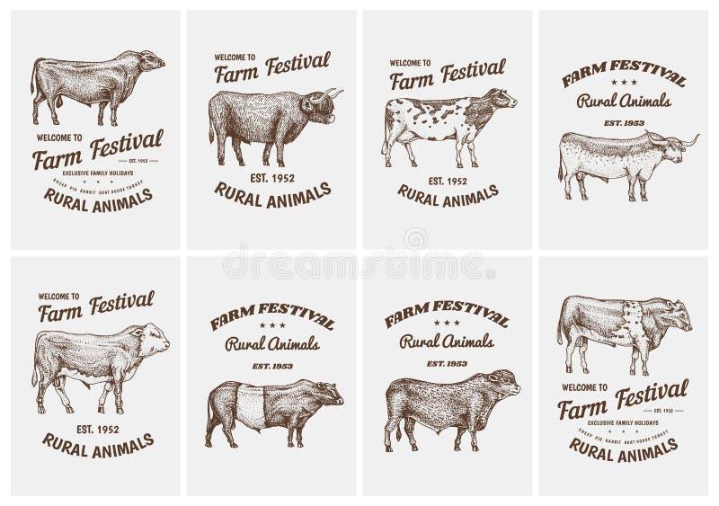 Rocznik karty Rolni bydło byki, krowy i Różni trakeny zwierze domowy Set plakaty Grawerująca ręka rysująca royalty ilustracja