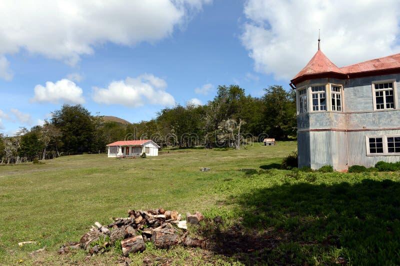 Rocznik nieruchomości Vicuna w Tierra Del Fuego zdjęcie royalty free