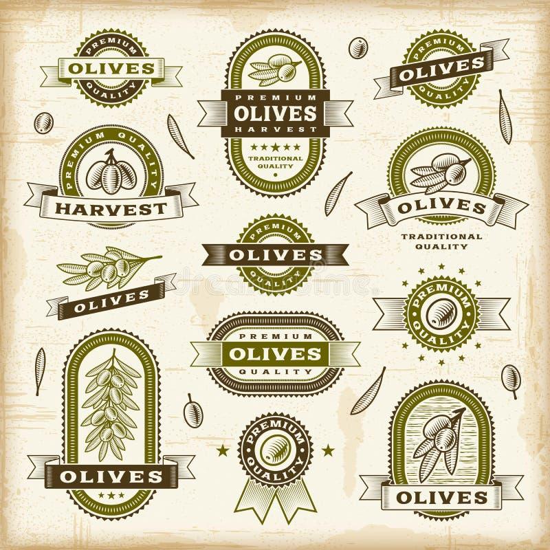 Rocznik oliwki etykietki ustawiać royalty ilustracja