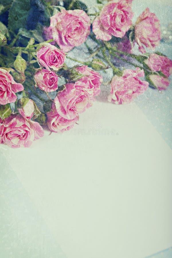 Rocznik róże zdjęcie royalty free