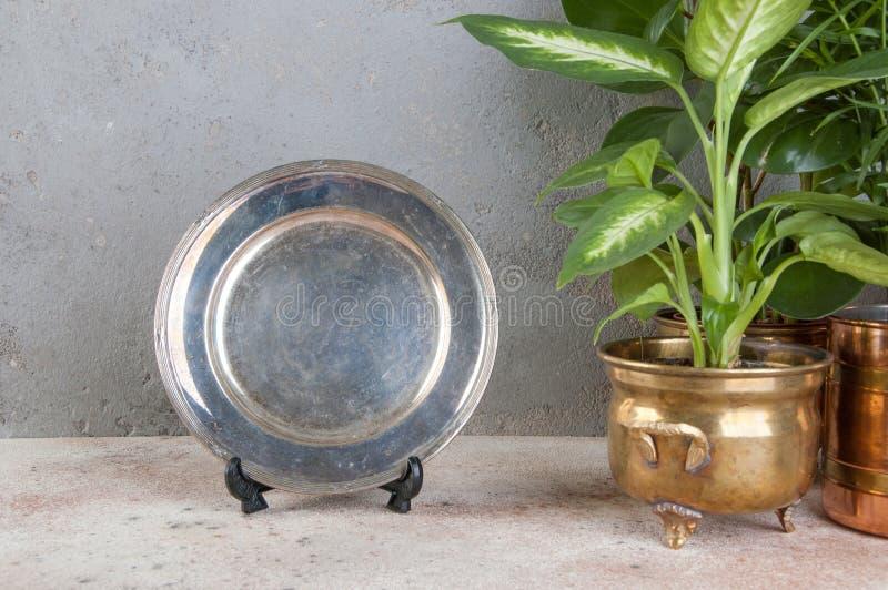 Rocznik silverplate naczynie i zielone rośliny zdjęcie stock