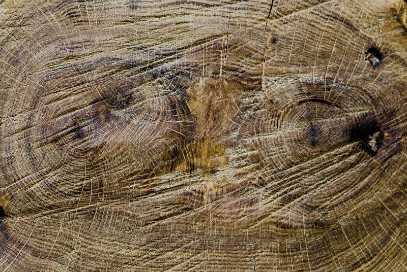 Rocznik starzej?cy si? ciemnego br?zu t?a tekstury drewniany zako?czenie up obrazy stock
