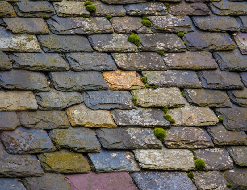 Rocznika Łupkowy Dachówkowy dach zdjęcia royalty free