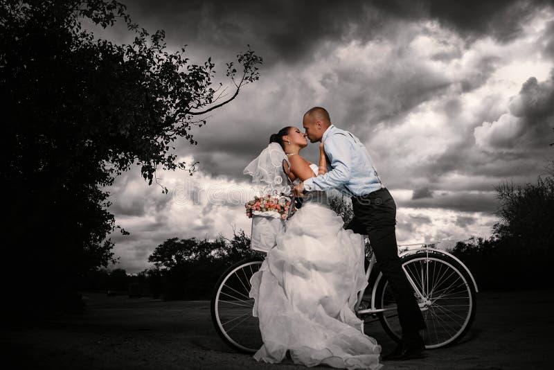 Rocznika ślub zdjęcia royalty free