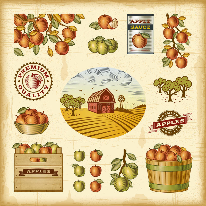 Rocznika żniwa kolorowy jabłczany set ilustracja wektor