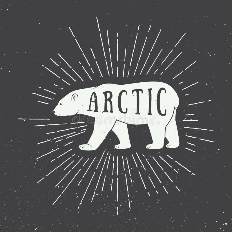 Download Rocznika Arktyczny Biały Niedźwiedź Z Sloganem Ilustracja Wektor - Ilustracja złożonej z biegunowy, przygoda: 57668974