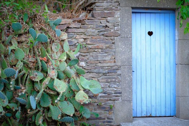 Rocznika błękitny drewniany toaletowy drzwi obrazy stock
