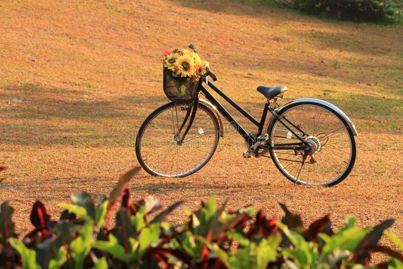 Rocznika bicykl fotografia stock