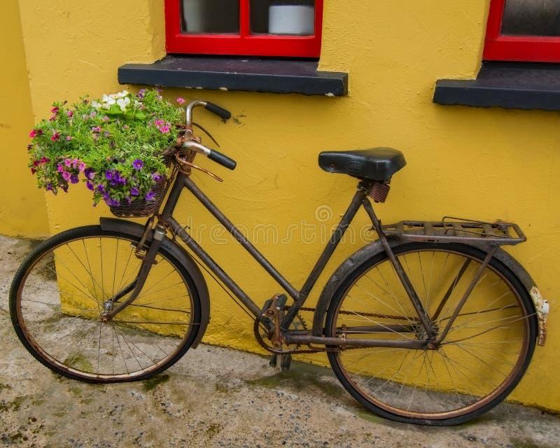 Rocznika bicykl w Bunratty obrazy royalty free