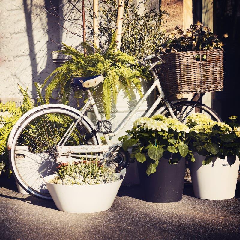 Rocznika bicykl z kwiatami na busket obrazy royalty free